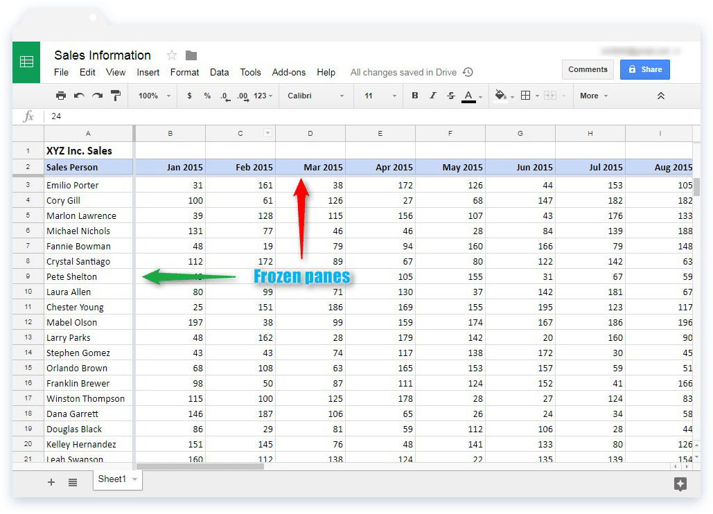 Freeze Rows and Columns in Google Sheets: Snapshot of Frozen Panes