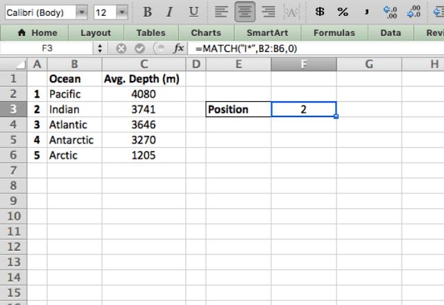 MATCH Excel wildcards 4