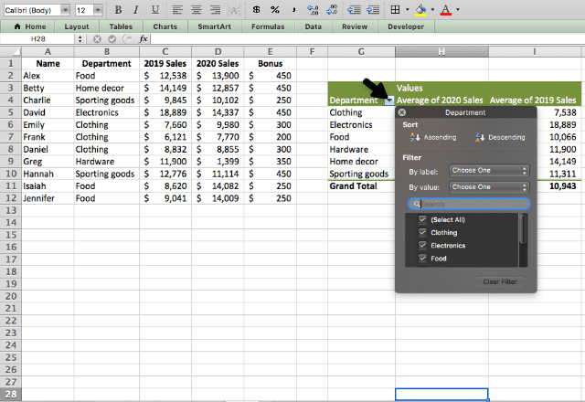 pivot table in excel 10. filtering